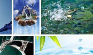 лечебната сила на водата