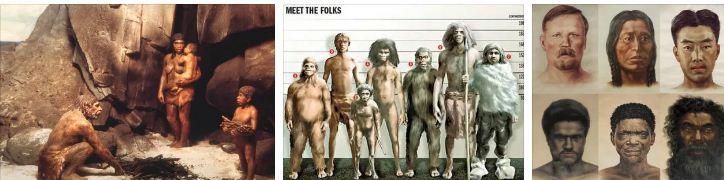 еволюира ли човекът наистина