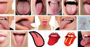 налепи по езика солен вкус в устата вкусови рецептори