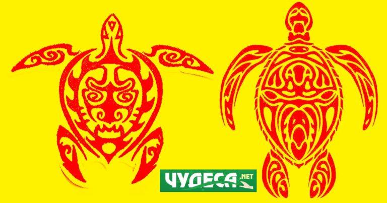 костенурка символика талисман