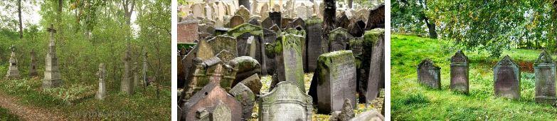 гробище енергетика геопатогенни зони