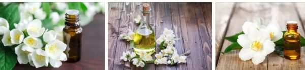 масло от жасмин ароматерапия