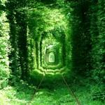 Клеван - най-романтичният тунел на света