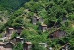 Изглед от село Врата - много зеленина и къщурки, сгушени в нея