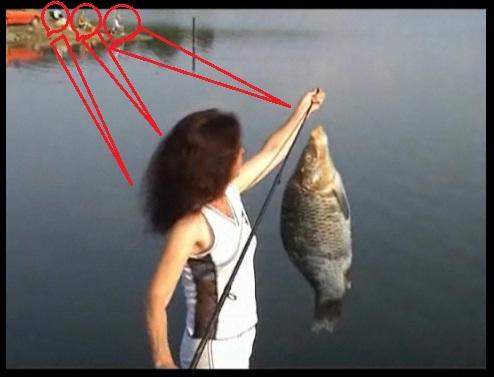лов и риболов в ТОП 10 БГ реклами