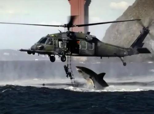 Вижте чудовищна акула убиец! (ВИДЕО и ГАЛЕРИЯ ОТ ШОКИРАЩИ СНИМКИ)