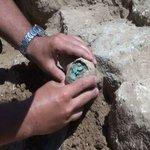 Уникално заровено съкровище откриха край Созопол