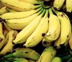 И така на кората на един такъв банан ... О, Чудо!
