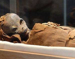 """Тайнственото същество е било съветник на фараона, носещ името Осирунет, което в превод означава """"звезда"""" или """"пришълец от звездите"""""""