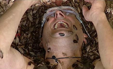 http://www.chudesa.net/wp-content/uploads/2012/11/formicophilia.jpg