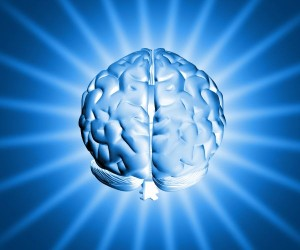 Inteligentnost ne e umstveni sposobnosti