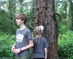 Дървото погълна велосипед