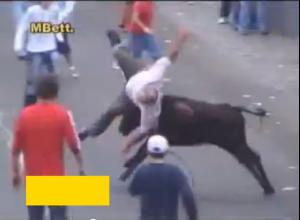 Бикове нападат и наръгват хора по улиците!