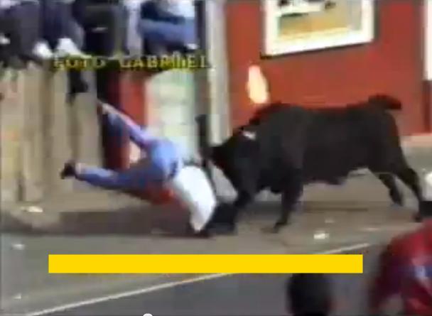Бикове нападат хора по улиците!