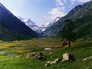 Долината Джатинга