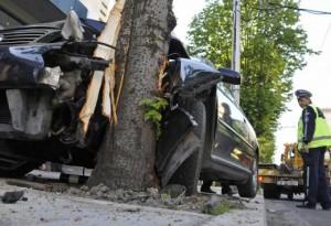 Така дървото край пътя стана убиец