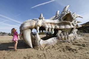 Череп на дракон на плажа