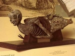 mermaid-mummies01.jpg