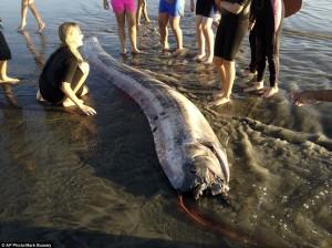 Само за няколко дни -второ мъртво чудовище край калифорния