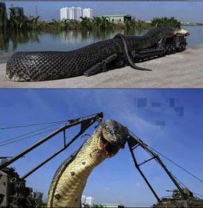 най-голямата змия