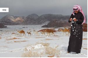 sahara-snowing