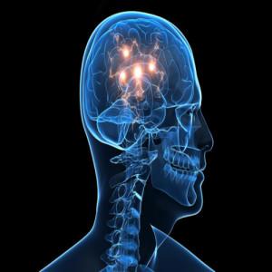 Човешкият мозък е способен да се самовъзстановява