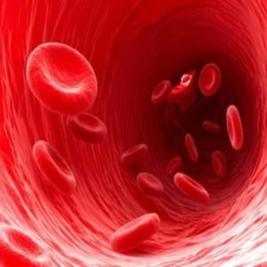 Кръвна група и характер