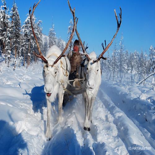 Село в Сибир е най-студеното населено място в света