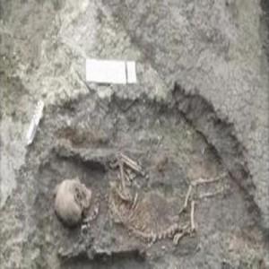 сатир скелет
