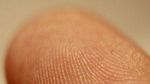 адерматоглифия пръстови отпечатъци