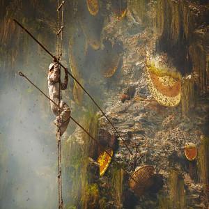 мед Непал