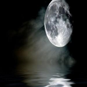 Луна организъм