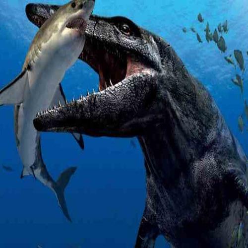 Огромно мистериозно чудовище в бездните на океана шокира науката