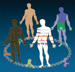 Човешкото тяло е една безкрайна мистерия и едва ли някога ще бъде напълно разгадано