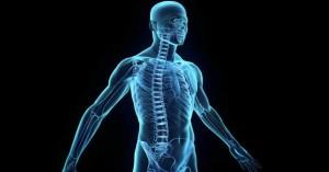 Човешкото тяло съдържа около 37.2 трилиона клетки…интересно нали