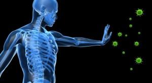 Имунната система е изключително важен и чувствителен механизъм
