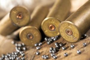 леене на куршум