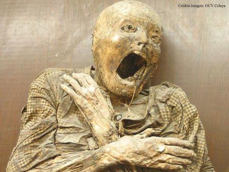 най-страховитите музеи в света