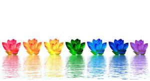 Нашите чакри са седемте енергийни центъра, които всеки има в тялото си