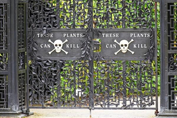 Отровната градина на Алнуик се намира в близост до зловещия замък, носещ същото име