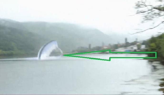 Българското Неси засякоха в езерото в Панчарево? (ВИДЕО)
