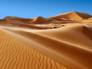 Според учените може би пустинята Сахара съществува от 7 милиона години