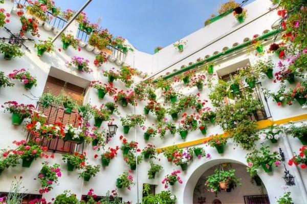 Всяка година в Кордоба се организира удивителен фестивал на цветята