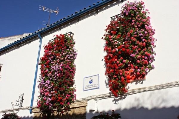 фестивал на цветята