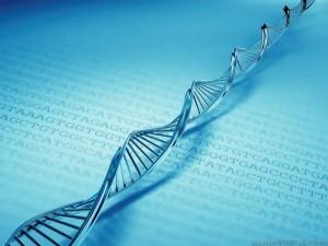 """Човешкото ДНК е биологичният """"интернет"""" и в много аспекти превъзхожда изкуствения"""