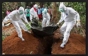 вируса ебола