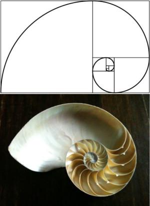 числата на Фибоначи