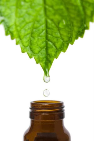 Етеричното масло от евкалипт се използва за лечение и облекчаване на редица състояние