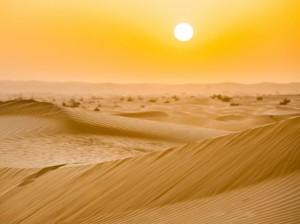Сахара  разполага с комбинация от пясъчен и скалист терен с пясъчни дюни и голи скали