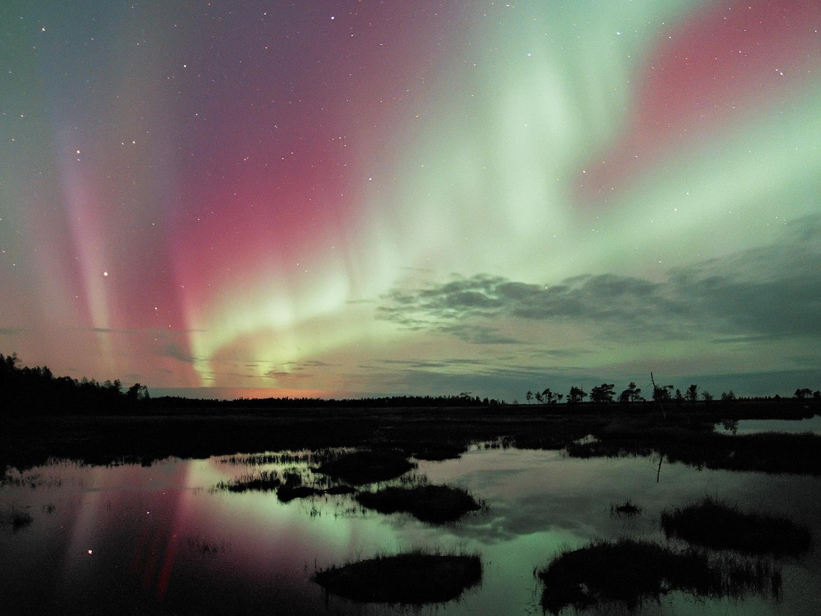 7 любопитни мита за Лапландия (които всъщност са верни)